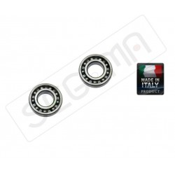 Set of rotor bearings LEM