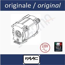 Electric motor 220V 413