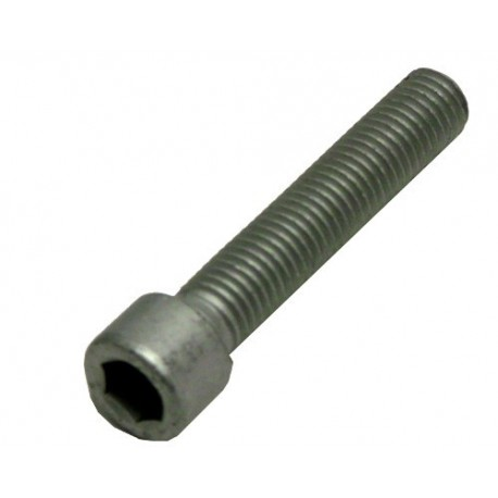 Screw for lifting SUB